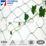2015 new hdpe uv treated peas climbing bop climbing net/trellis support netting/plant climbing plastic wire mesh for cucumber