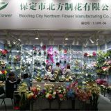 Baoding City Northern Flower Manufacturing Co., Ltd