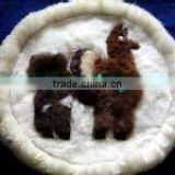 "Baby Alpaca Pillow Case / Baby Alpaca Rug 20"" Fur Both sides Peru"