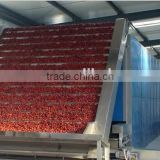 Continuous Hot Air Garlic Ginger Slices Cubes Drying Machine big capacity