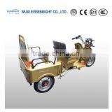 electric pedal rickshaw passenger tricycle,adult electric pedicab tricycle passenger,electric tricycle with pedal asistant