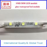 outdoor smd 5730/2835/5050 LED module glue waterproof led module single color rgb color module pixel