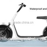 2 Wheels Wheel Electric 19 Inch Balance Scooter With Handle Seat