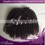 2016 Great Unprocessed Malaysian Human Hair Kinky Curly Malaysian Virgin Hair Weave Kinky Curly 7A Human Hair Extension