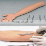 MCT-KC-008 Surgical Suture Arm Model