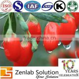 Chinese goji fberry plant extract