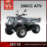 NEW sand buggy 250cc atv quad bike sand buggy street legal