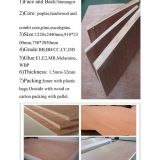 BB/CC Comercial Plywood Used for Furniture