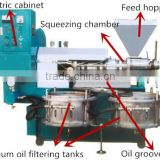 full-auto avocado seed oil extraction vegetable planting machines