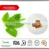 2015 TOP SELLING!!! 100% Natural Lemon Balm Leaves Extract 10:1/Rosmarinic Acid powder 5%, 10%, Flavonoids 5%