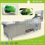 PT-2000 Full Automatic Industrial Vegetable Blanching Blancher Sterilizer Machine
