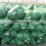 Green Fresh cabbage mesh sacks, packing Chinese cabbages bags