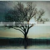 Tree glass prints decor paper printed pictures for home decoration