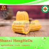custom buying online in china canned sweet corn