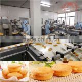 Guqiao Brand Custard Cake Making Machine