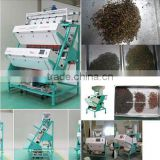 CCD Color Sorting Machine for Tea, Tea grader garlic slice, green tea, oolong tea, Dehydrated Garlic, Black Tea ,Green Tea