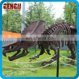 High Simulation Dino Fossil Fiberglass Dinosaur Skeleton