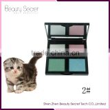 Professional 4 Colors Shimmer Eye Shadow Hot Sale Brand Cosmetics Naked Matt Shadows palette