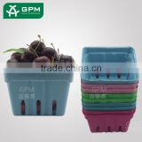 China cheap price square shape container waterproof colorful dry fruit plate