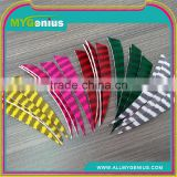 Archery Vanes And Stripe Feather Arrow For Archery Arrow Shooting
