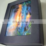 Fashinal Professional High Quality 3d lenticular blister packaging with low price