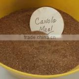 Canola Meal for animal feed
