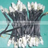 12mm Diffused Digital RGB LED Pixels;black cable,25pcs a string,DC5V input;with 4pin JST connector