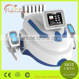 CE Approved Portable Vertical Typle Fat freezing Vacuum Cavitation Electro Stimulation Instrument
