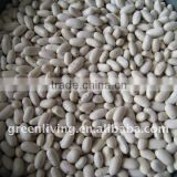 dried white beans