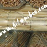 Natural Woven Reed Fence