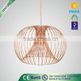 led pendant lamp Indoor pendant wall lamp new design pendant lights                                                                         Quality Choice