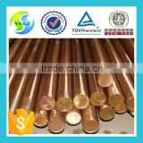 Hot sale C1011 copper earth rod,price copper bar