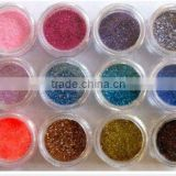 12 Color Glitter Acrylic Powder Nail Art Makeup Body Painting