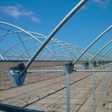 High Quality Professional EU Type Greenhouse