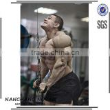 Wholesale Men's Bodybuilding Gym Shorts Fitness Workout Pants Cloothes High Quality 100% Cotton