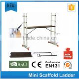 Lyte Multi-Purpose Platform and Scaffold Ladder steel ladder specifications/aluminum platform