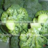 fresh broccoli(chinese)