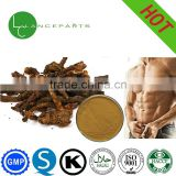 100% Herb plant powder sexy product Cistanche Extract powder