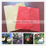 Fruit growing paper bag for fuji apple