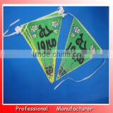 national flag in small size,20*30cm Bunting Party Flag,triangle flag bunting