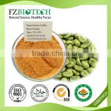 Free sample green coffee bean extract powder 50% chlorogenic acid, Pure green coffee bean extract