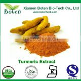 GMP Manufacturer Supply Best Selling Bulk Curcumin Powder