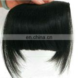 Ho Beauty Human Hair Bang Fringe