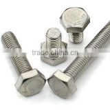 304 stainless steel bolt/316 stainless steel bolt /stainless bolt/stainless steel hex bolt