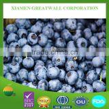 Frozen Cultivated Blueberry