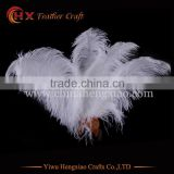 2016 wholesale26-28 inch bulk ostrich feathers for carnival costumes