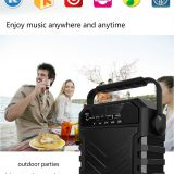 Portable Active, Bluetooth Multimedia Speaker Box, Portable Speaker, Microphone, Sing Karaoke