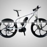 "hot selling 26"" aluminum alloy frame mountain electric bicycle mid drive                                                                         Quality Choice"