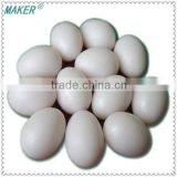 Imitation Plastic Pigeon Egg For Hatching