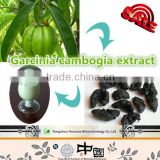 High Quality Weight Loss Garcinia Cambogia Extract 60% Hydroxycitric Acid